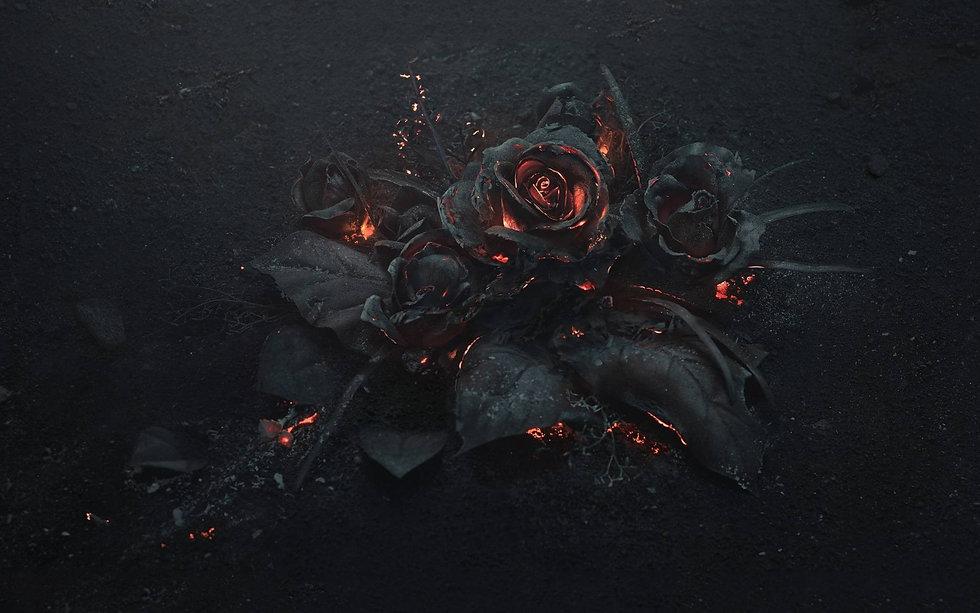 black-rose.jpg