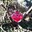 Thumbnail: Magenta QBC Pendant