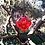 Thumbnail: Red QBC Pendant