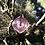 Thumbnail: Pink QBC Pendant