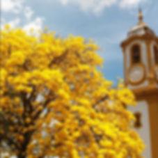 A Pousada Recanto Bem Te Vi é uma excelente opção de hosdepagem na cidade de Tiradentes - Minas Gerais. Localizada à cerca de 800m do centro histórico.