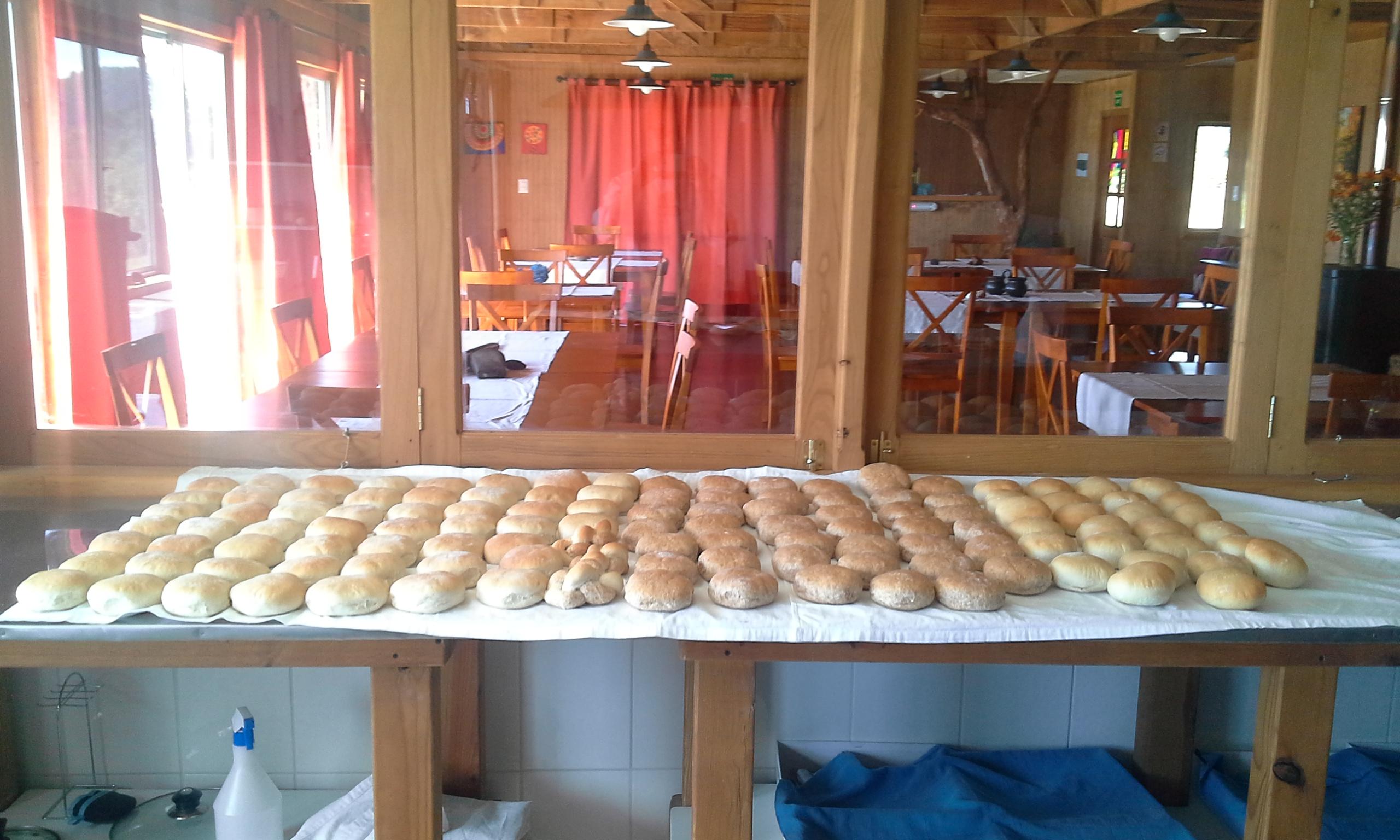 Panes amasados de medio día