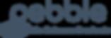 Pebble_Logotype_Blue LifeScienceProducts