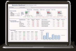 Broadvine Software Executive Dashboard W