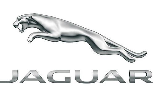 Umbau von RHD auf LHD (Jaguar) - ab 250.-€