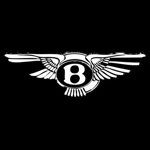 Umbau von RHD auf LHD (Bentley) - ab 650.-€