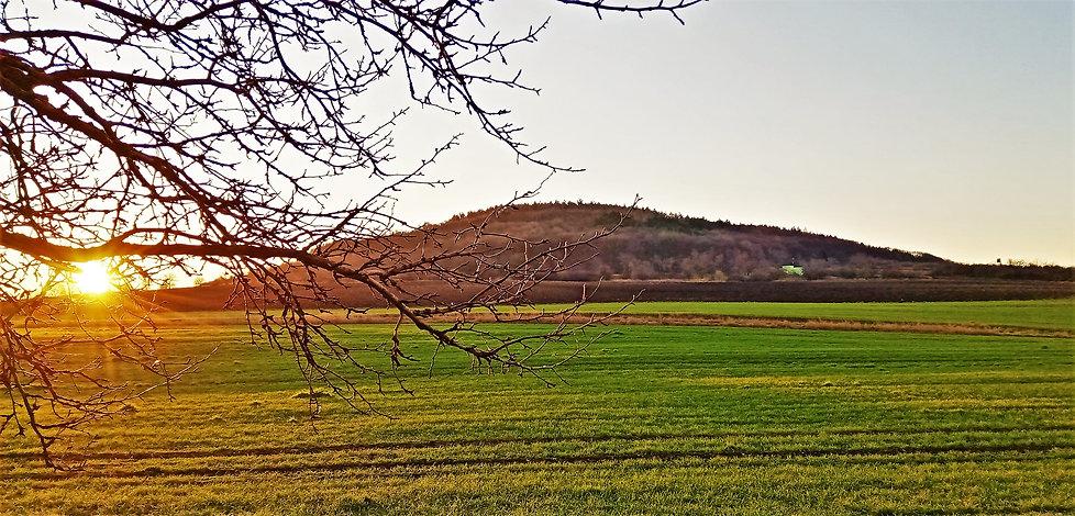 Na Přírodní památce Velká Volavka je vel