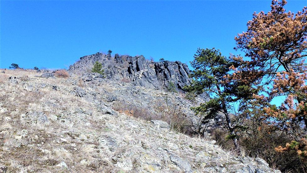 Výškové partie hory Bořeň (VP).JPG