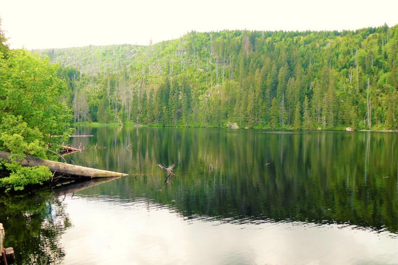 Galerie: Prášilské jezero - dar doby ledové