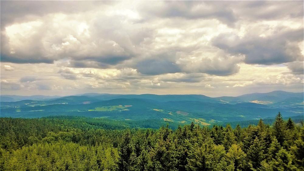 Pohled na Rychlebské hory z ochozu rozhledny na Borůvkové hoře