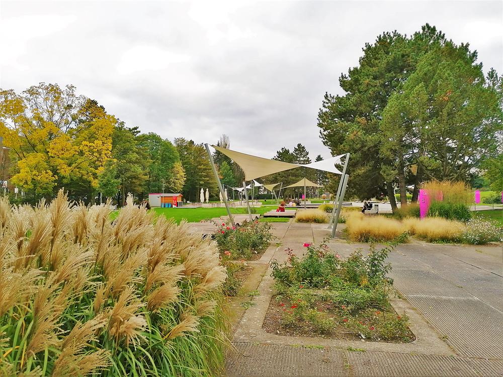 Rosárium Botanické zahrady Olomouc
