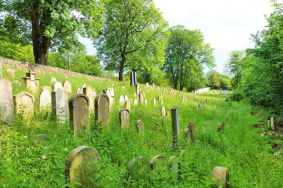 Starý židovský hřbitov ve Švihově  (VP).