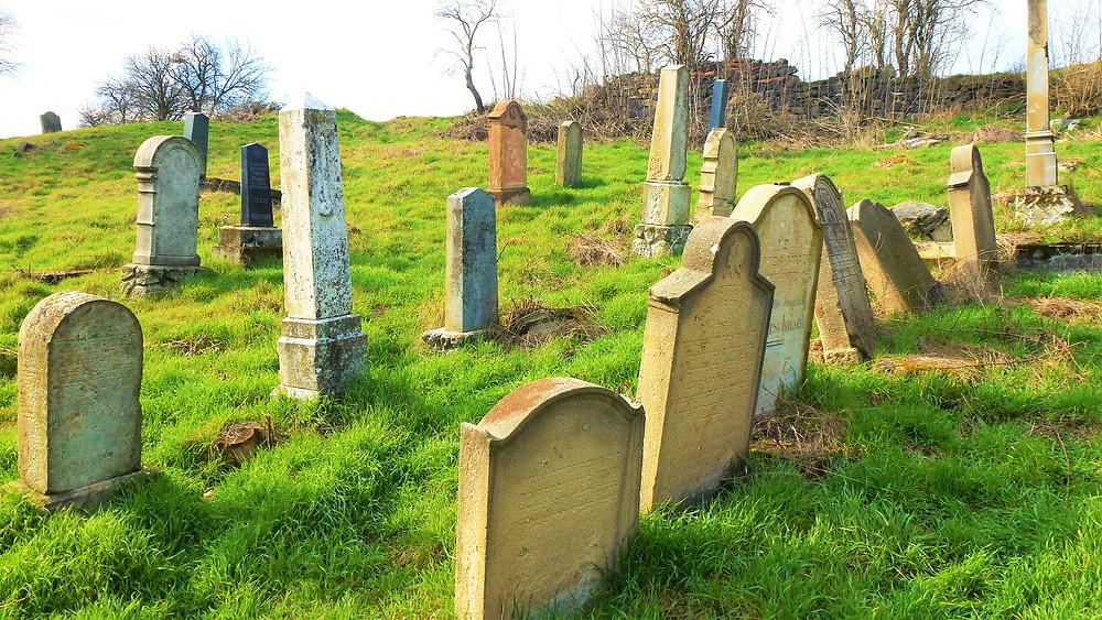 Náhrobky židovského hřbitova v Širokých Třebčicích