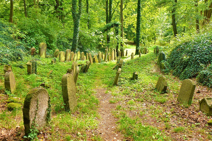Starý židovský hřbitov - Chodová Planá (