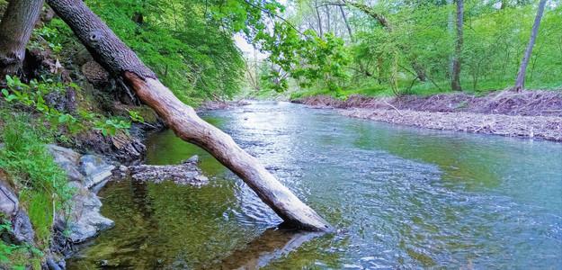 Řeka Morava na cestě Litovelským Pomoravím