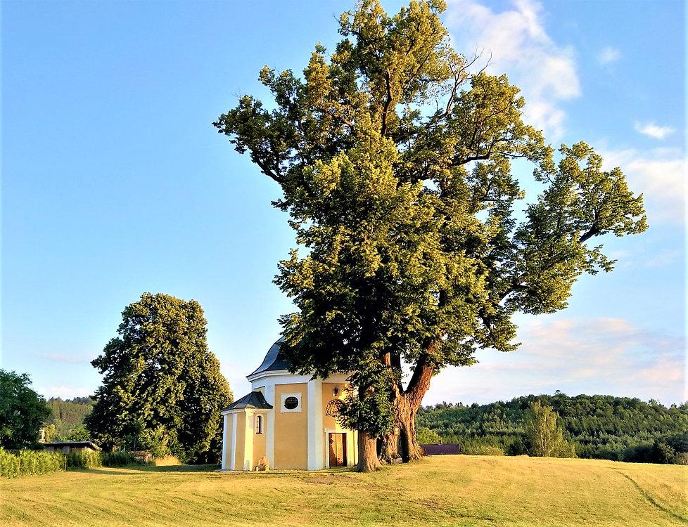 Památná lípa u Kaple v Obytcích (VP).jpg