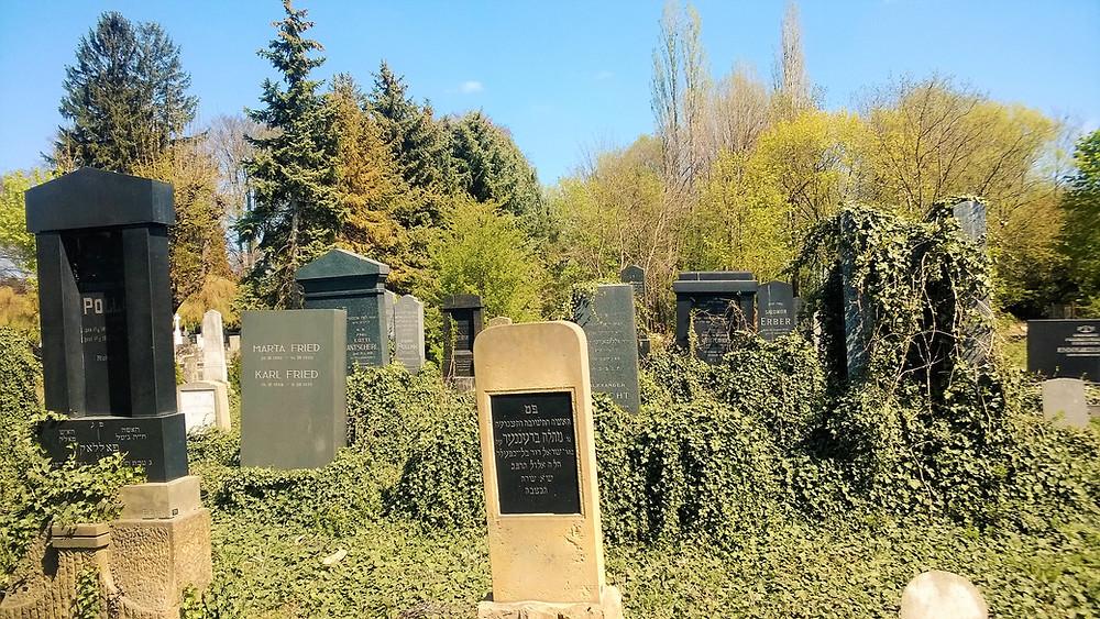 Židovský hřbitov v Prostějově