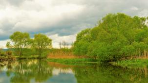 Přírodní památka Za Mlýnem je lokalita s jedním z největších výskytů Užovky obojkové na českém území