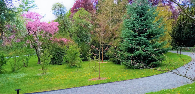 Arboretum v Bílé Lhotě není velké, nabízí ale mnoho krásných zákoutí