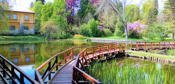 Procházka po jezerním mostíku v NKP Park Bílá Lhota
