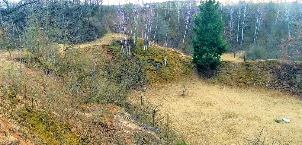 Přírodní památka Cigánské zmoly v Krčmani