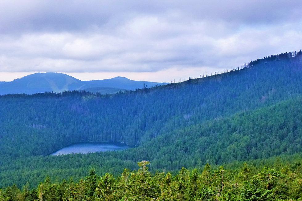 Pohled z rozhledny Špičák na Černé jezer