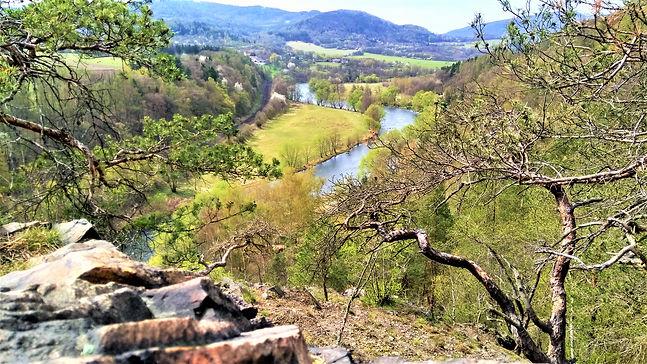 Diadém dostala Vyhlídka nad řekou II od překrásných letitých borovic