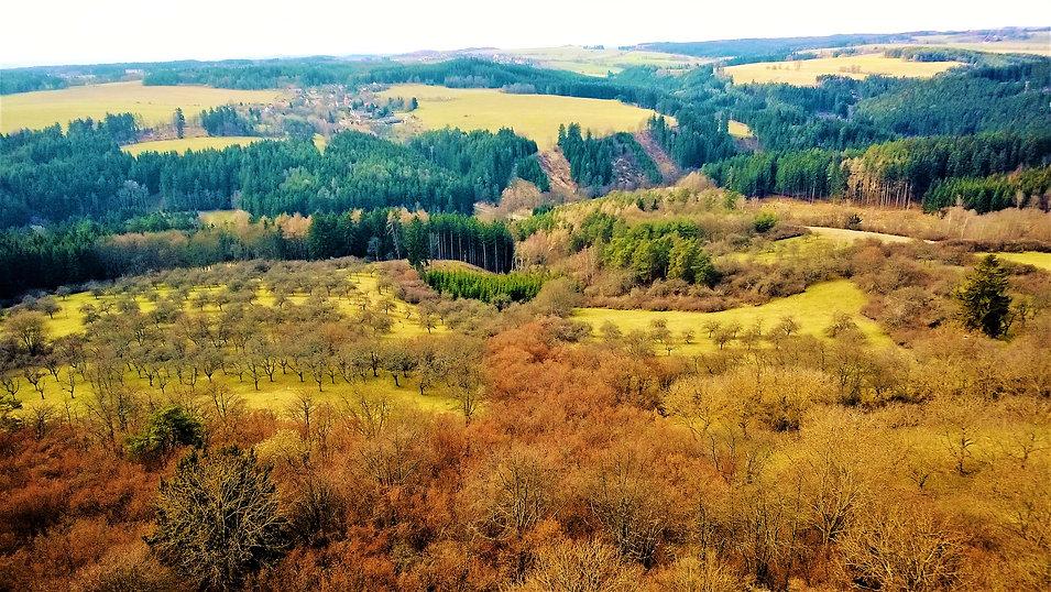 Pohled ze Svamberka.jpg