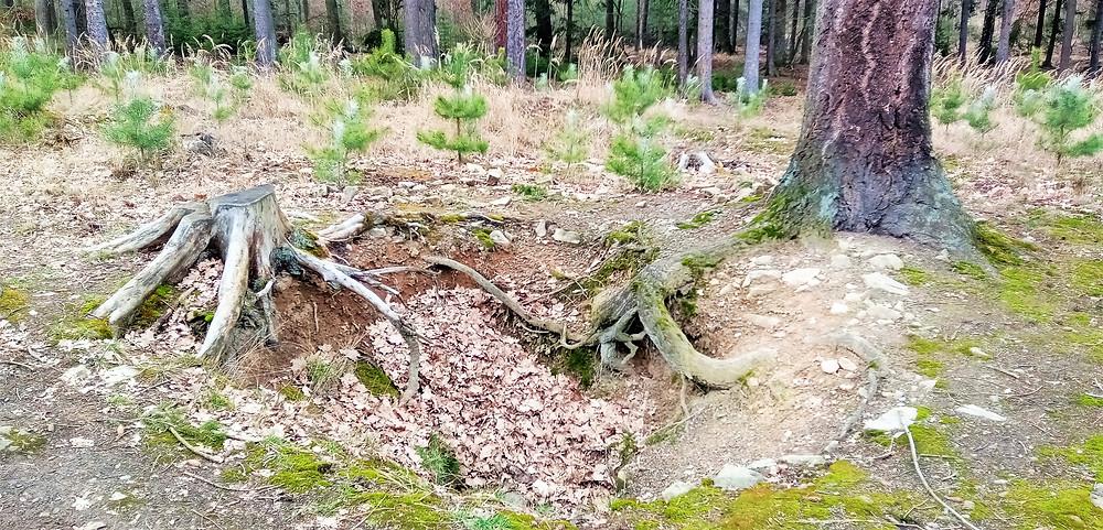 Jeden z husarských kousků českých archeologů - nález jedné ze studní, která zásobovala dávno zaniklou obec Hol