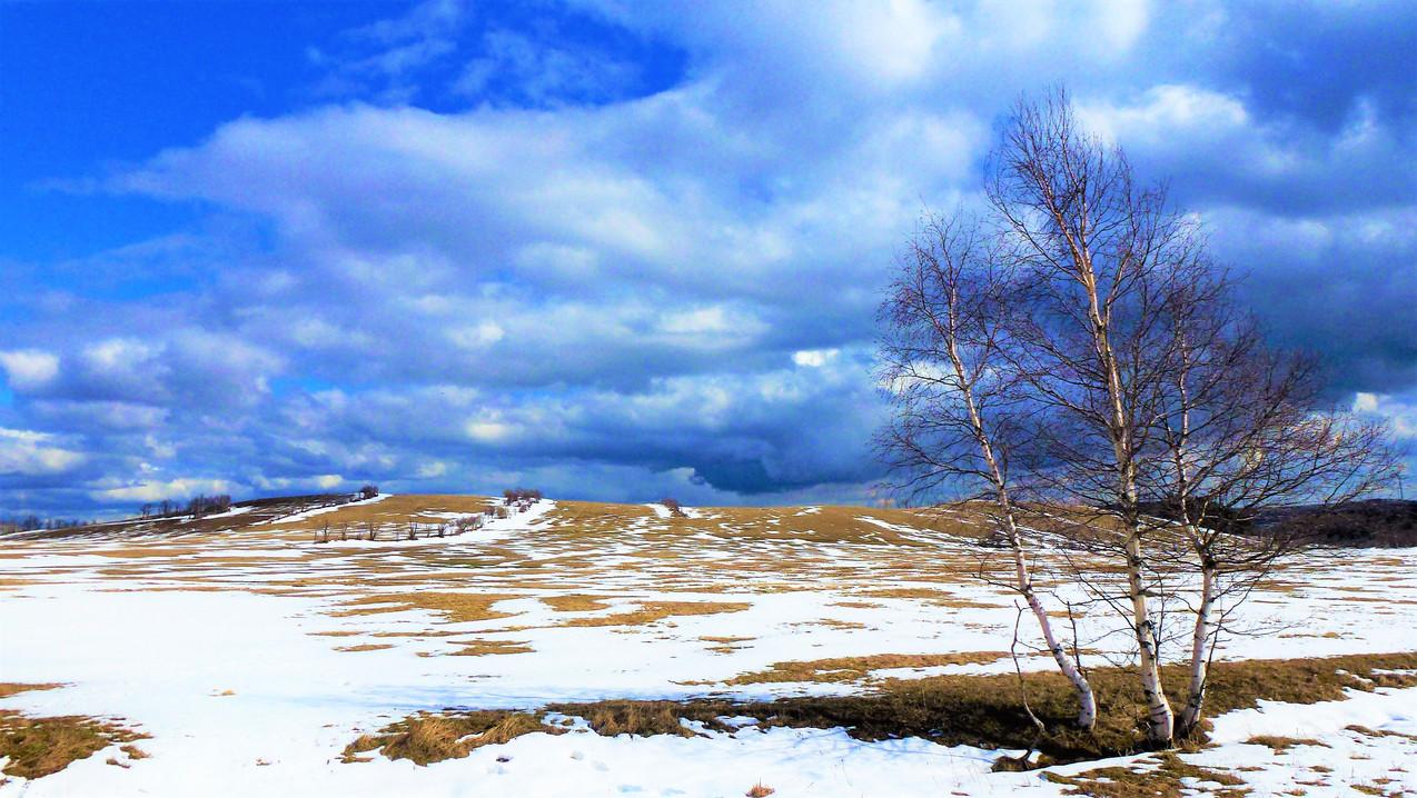 Galerie: Krajina bývalého Předního Cínovce