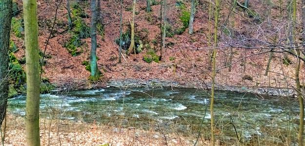 Řeka Bystřice protékající Přírodním parkem Údolí Bystřice