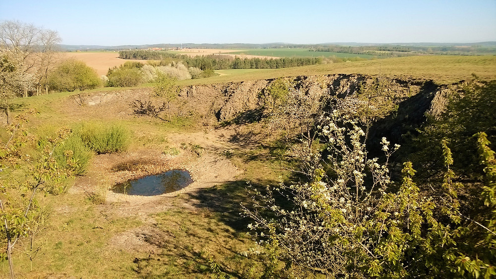Pohled na lokalitu PP Ohrozim - Horka