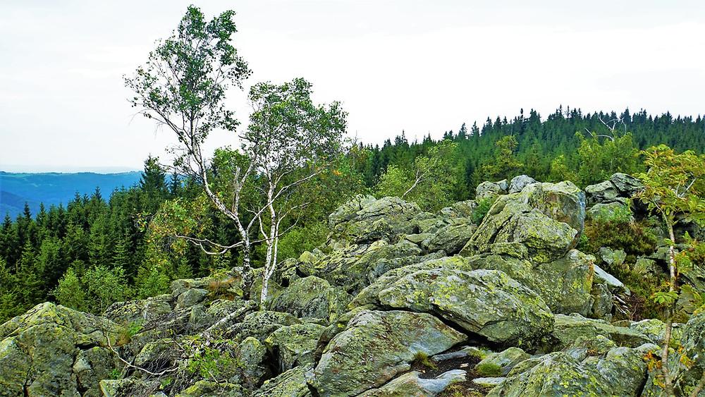 Na vrcholu vyhlídky Bílý kámen v Jesenících