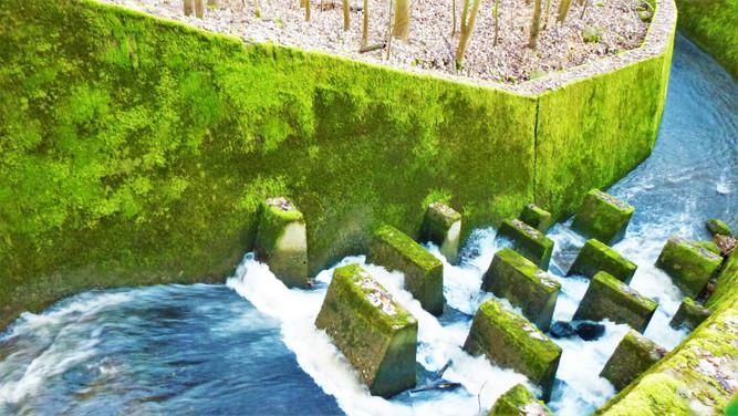 Galerie: Nespoutanost údolí Albrechtického potoka