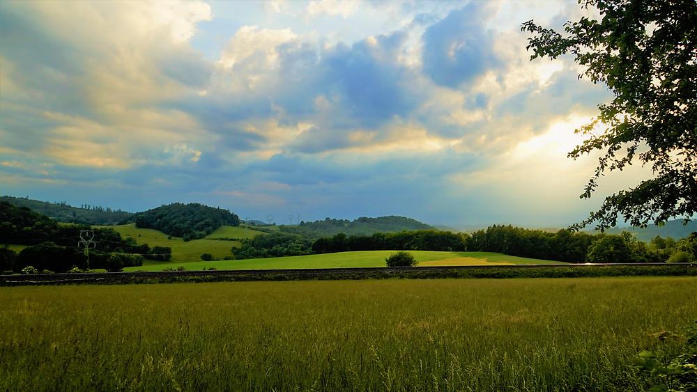 Obilné pole u Střezova
