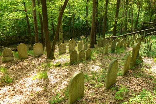 Galerie: Židovský hřbitov Slatina