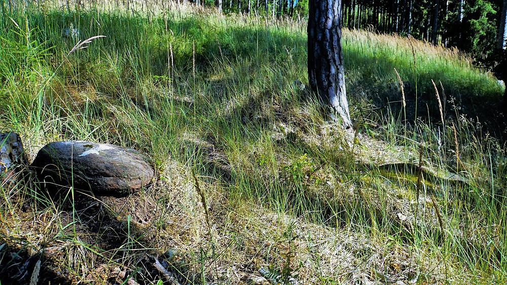 Pozůstatky Nečemických kamenných řad