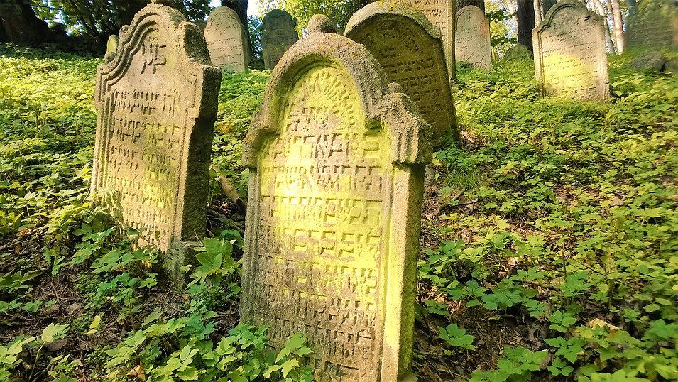 Na židovském hřbitově Nové Sedliště.jpg