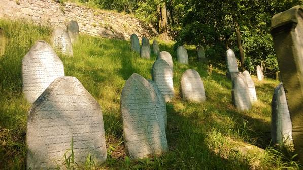 Galerie: Druhý nejstarší židovský hřbitov v Česku
