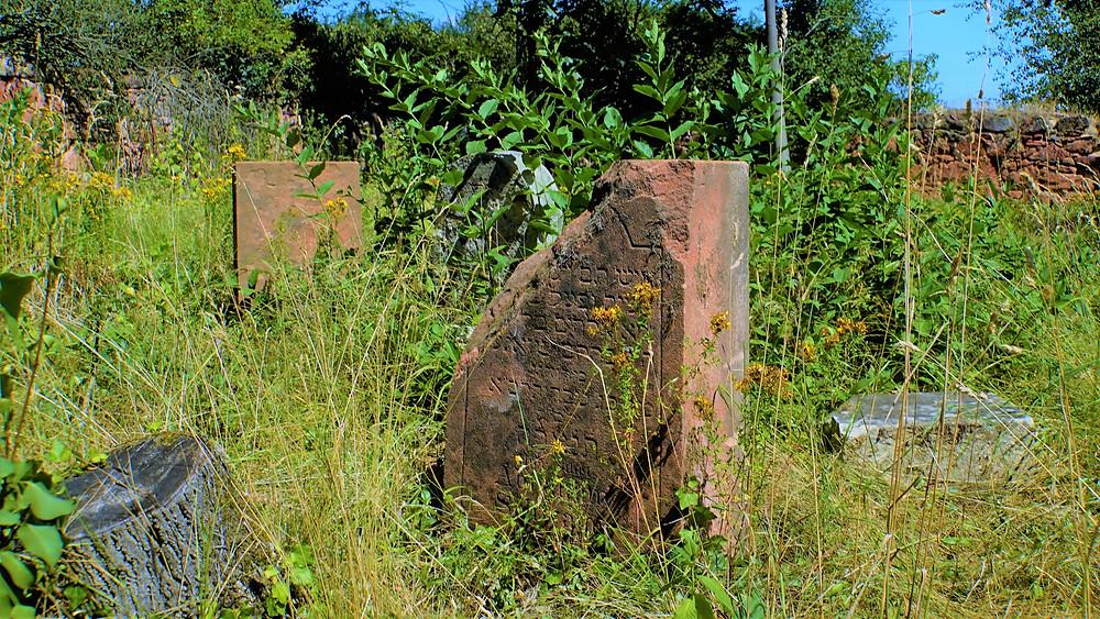 Některé náhrobky na židovském hřbitově jsou z místního podbořanského červeného vápence