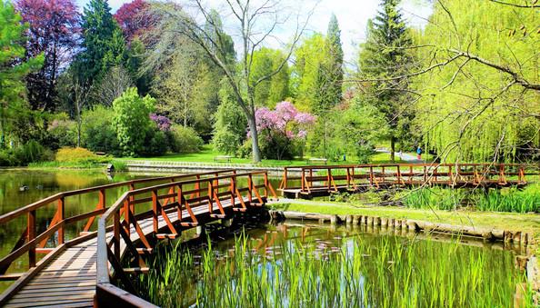 Mostní lávky v japonském stylu v arboretu v Bílé Lhotě