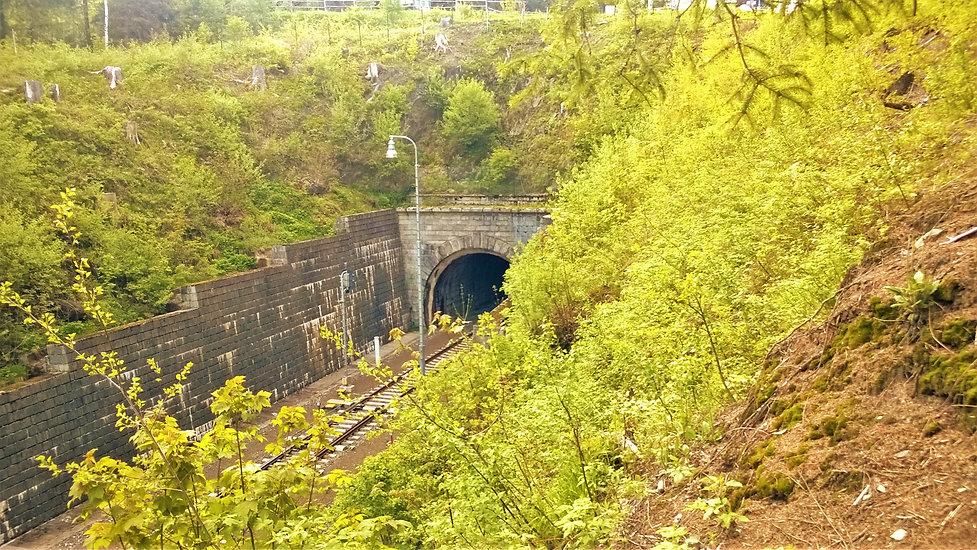 Železniční tunel Špičák.jpg