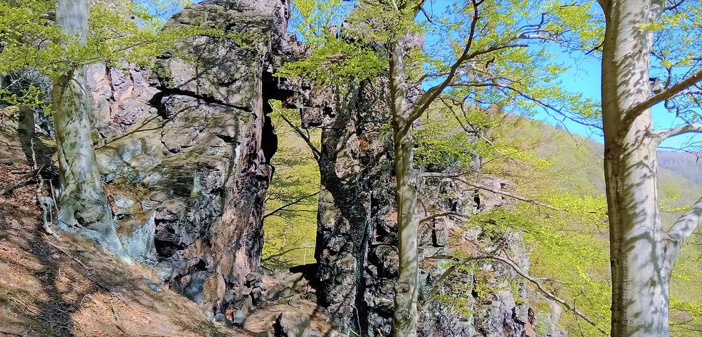 Cesta na vrchol Hradiště u Černovic