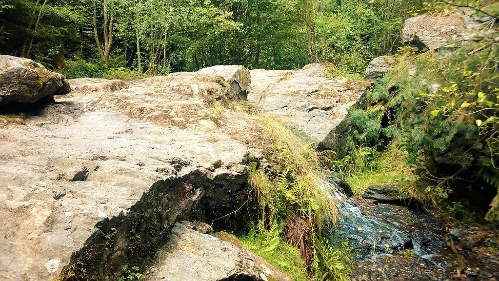 Jedna z větví Butovského vodopádu v such