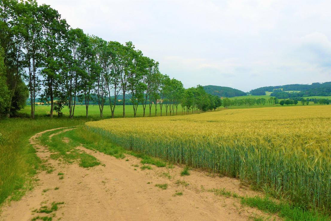 Galerie: Krajina kolem Sušice