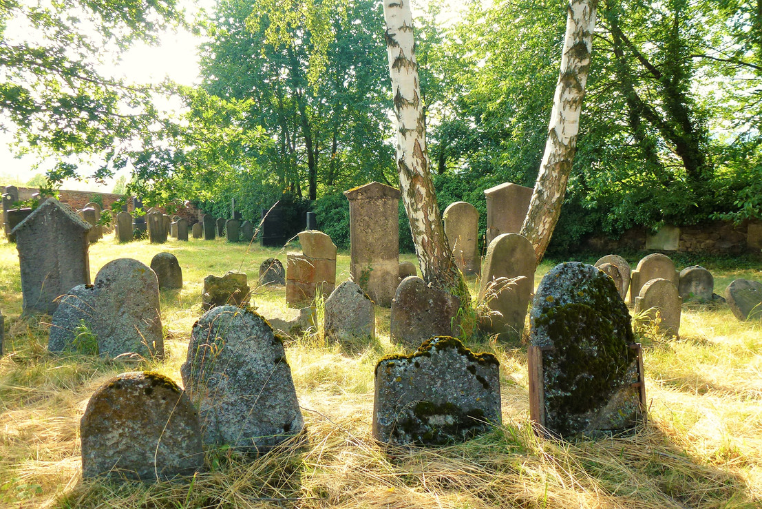Galerie: Židovský hřbitov Janovice nad Úhlavou