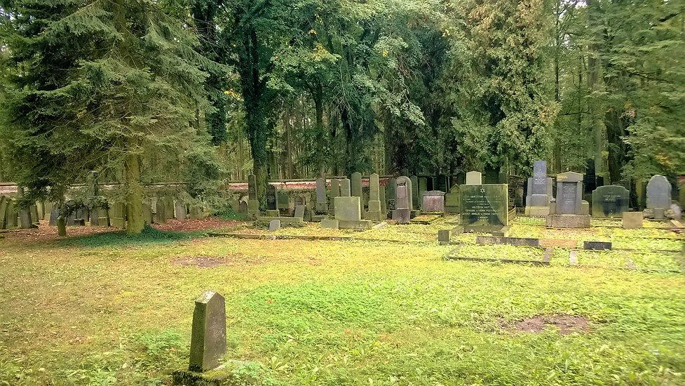 Židovský hřbitov Puclice.jpg