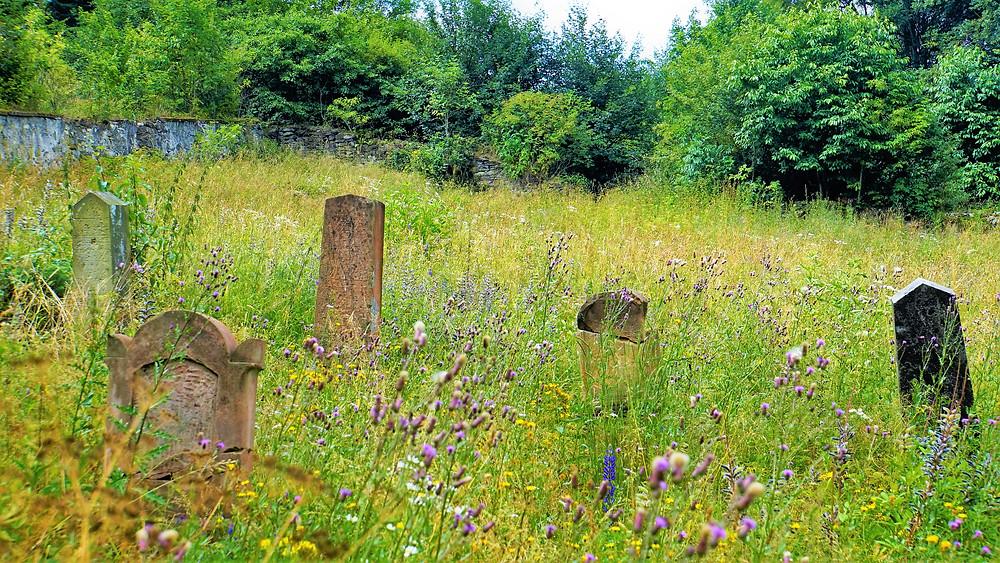 Židovský hřbitov v  Podbořanském Rohozci