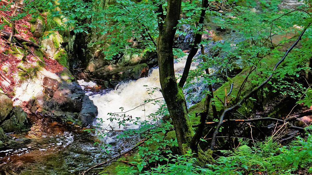 Dolní vodopád Chomutovky v Bezručově údolí