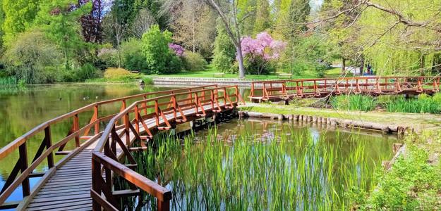 Park v Bílé Lhotě vybízí k užívání si krás rozkvetlé zahrady